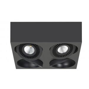 S7428.01 Eye
